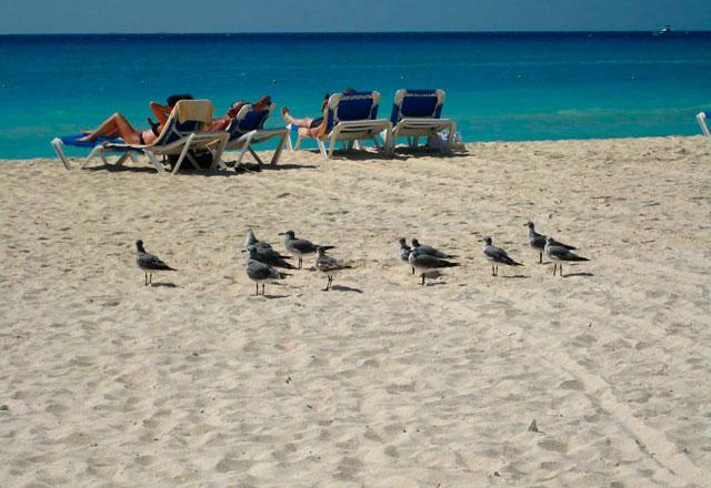 riviera-maya-playa-otono